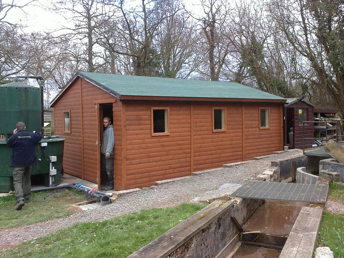6m x 4m with roof shingles